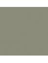 DD lak Hoogglans STANDAARD kleur